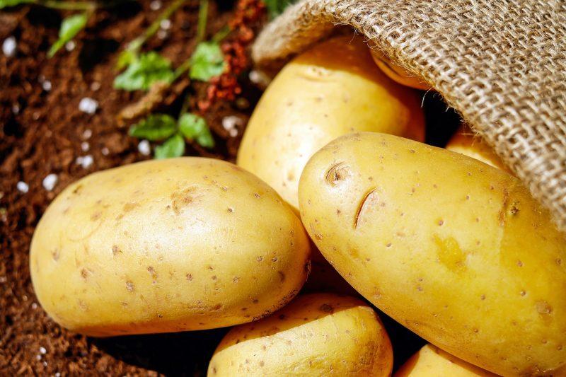 Chi mangia patate non muore mai…se son buone!